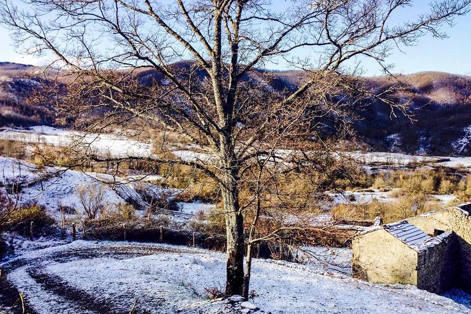 winter at novanta